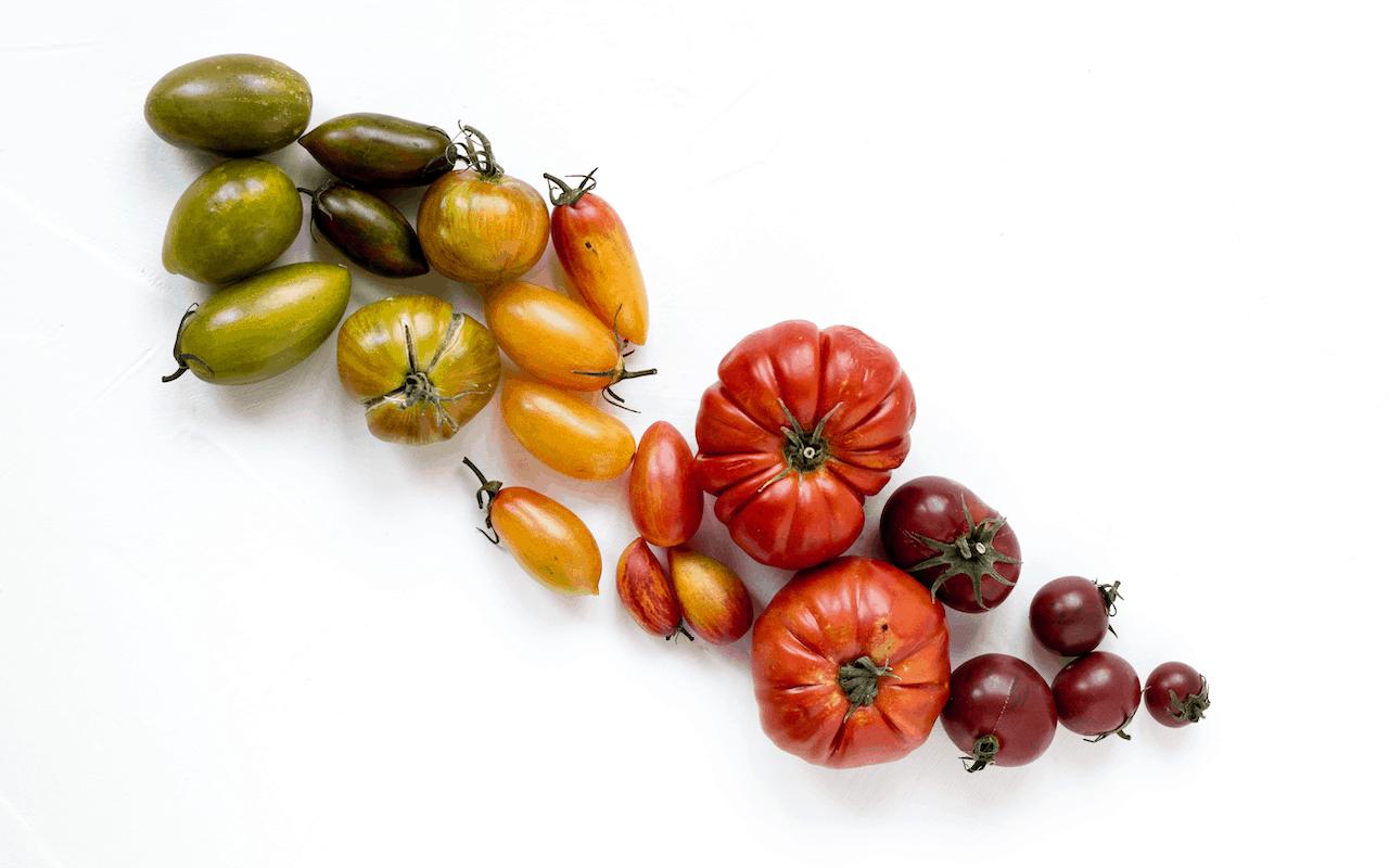 Gazpacho di pomodoro