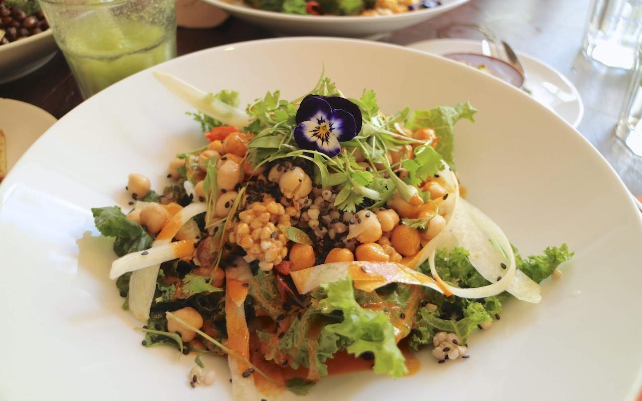 Ricette facili e veloci per pranzo